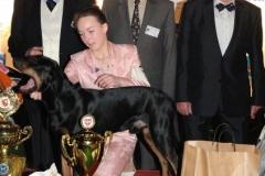 champions2011